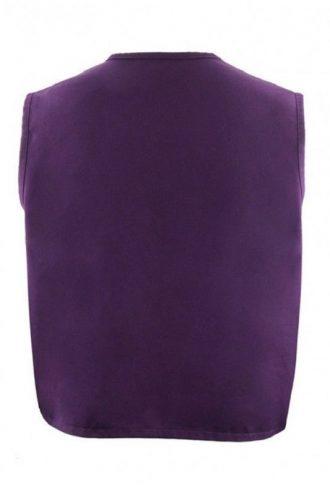 Aladdin Purple Vest